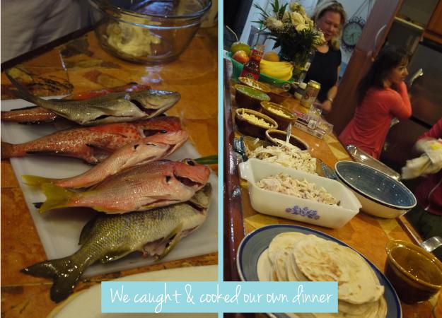 Mexico-fish2