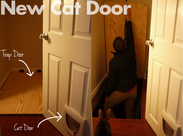 New-Cat-Door